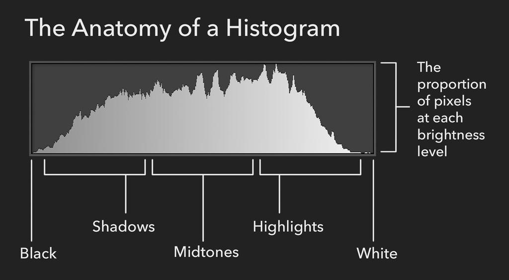 I M A G E P L AY B A C K S E T T I N G S LCD Screen / Information Display - Histogram What is a Histogram Graphical representation of the tonal values of image Shows brightness of tones ranging from
