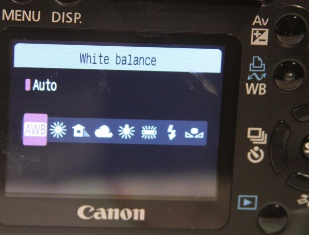 White Balance Existing Light Settings Typical